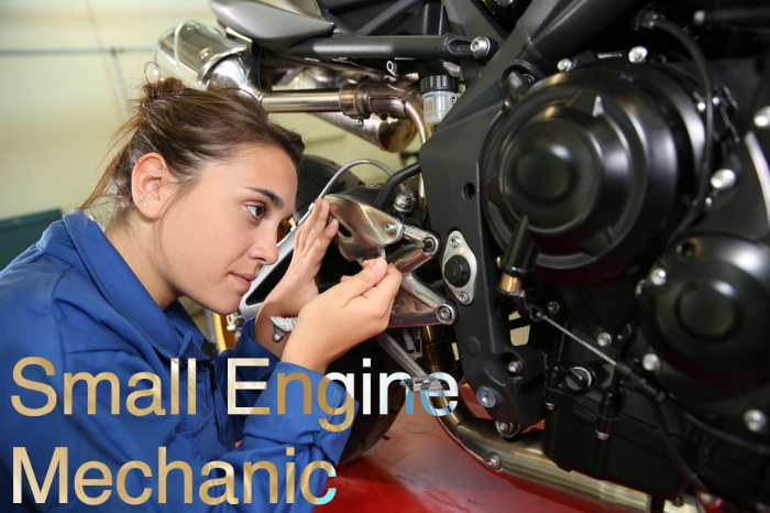 Different Types Of Mechanics Careers Diesel Mechanic Guide